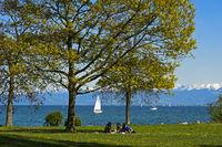 Park am Bodensee-Ufer