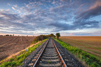 Old Railway tracks running through a field stretch to rural countryside at sunset.