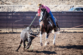 Team Roping Competition