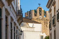 View to the cathedral of Faro, Portugal, Europe