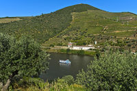 Excursion ship on the Douro River, Pinhao, Douro Valley, Portugal