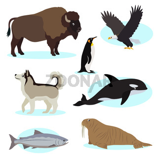 Set of cute wild animals icon for design and decoration