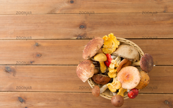 basket of different edible mushrooms on wood