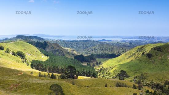 landscape Matamata