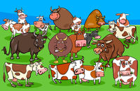 cows and bulls farm animal characters group