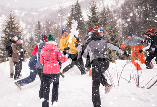 group of young people having fun in beautiful winter landscape