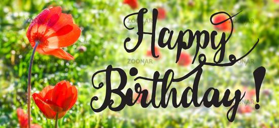 Sunny Poppy Flower, Spring, Calligraphy Happy Birthday