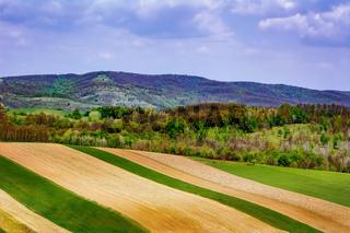 Fields in Carpathian mountains