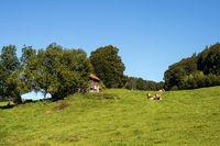Bavarian Landscape 024. Germany