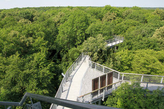 Baumkronenpfad im Hainich, UNESCO Weltkulturerbe, Thüringen, Deutschland, Europa