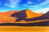 In the desert Namib-Naukluft