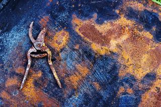 Rusty pruner on the rusty metal sheet