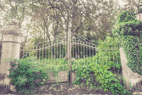 old silver metal gates overgrown with green vegetation