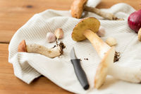 edible mushrooms, kitchen knife and towel