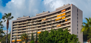 block of flats and palm trees