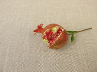 Burst opened mature dwarf pomegranate with seeds