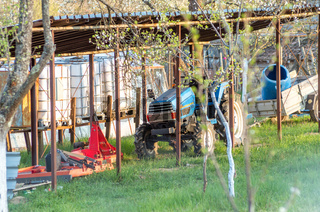 Tractor on a small home farm for vegetables and fruits. Green grass, blooming plum trees. Blue tractor with rammers and milling machines for land processing. Rural home farm.
