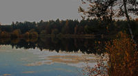 Lake in the Lueneburg Heath