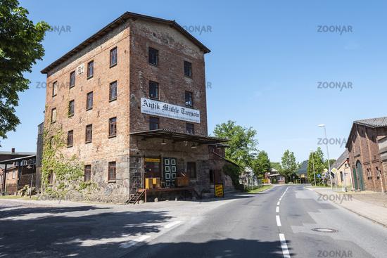antique mill, antique shop, Tarnow, Mecklenburg-Western Pomerania, Germany, Europe