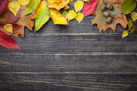 Autumn Leaves And Acorns On Wooden Table