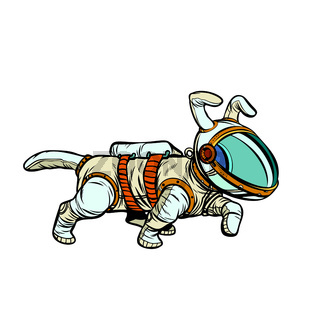 pet dog astronaut