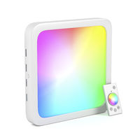 Led panel with changeable light colors