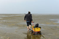 Hiker pulls a handcart across the mudflats, Schleswig-Holstein Wadden Sea, Germany