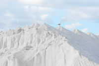hill of pure sea salt with seagull