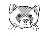 black-footed ferret Endangered Wildlife Cartoon Mono Line Drawing