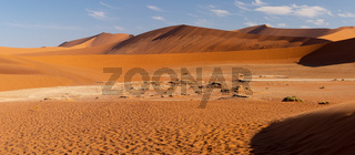 beautiful landscape Hidden Vlei in Namibia Africa