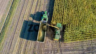 Maisernte, Landwirtschaftliche Tätigkeit zur Ernte Saison