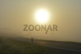 Strasse im Nebel bei Sonnenaufgang, mit Sonne auf dem Land mit Textfreiraum