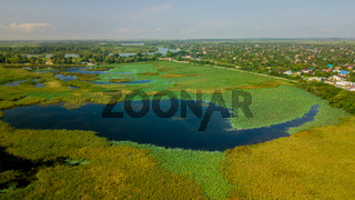 Aerial view nature: the filed of a lotus flower. Background is the lotus leaf and lotus flower and lotus bud and tree.