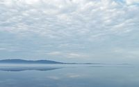 Morning lake landscape