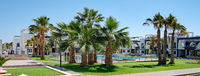 Lush palm trees inside of closed urbanization with green lawn swimming pool modern houses at sunny summer day. New property in Spain, no people, horizontal image panoramic view. Torrevieja city, Spain