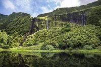 Poco da Ribeira do Ferreiro, Flores island, Azores, Portugal.