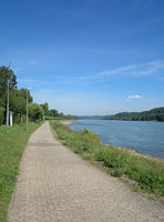 bicycle path at Rhine River,Rhineland-Palatinate,Germany