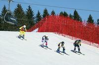 FIS Ski Cross Weltcup Feldberg - 2. Tag