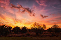 A Dramatic Sunset Over Rural Florida, USA