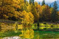 Fantastically beautiful autumn