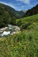 Zillertaler alps, austria, europe, near the river ziller