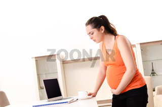 Young pregnant woman working at home