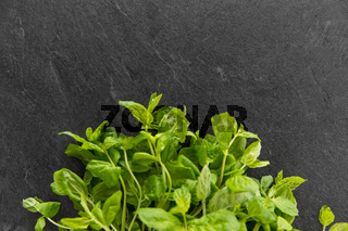 green mint leaves on stone background