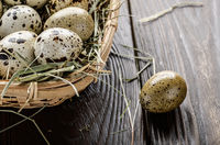 Fresh organic quail eggs in small wicker basket on rustic kitchen table. Space for text