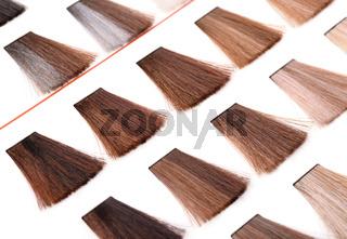 Palette of hair color dye samples