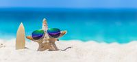 Starfish surfer on tropical beach