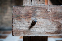 rusty screw in  wood beam closeup - construction concept background