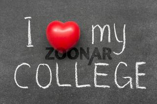 love my college