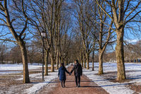 Love couple holding hands walking on the walk path in winter landscape with snow and dry tree