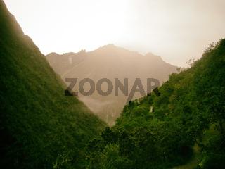 Golden mountain behind wild jungle.